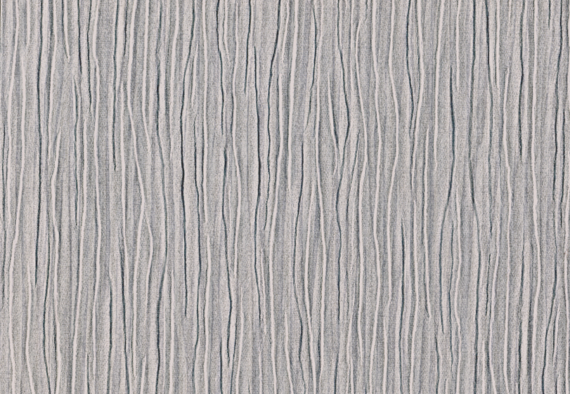 wallpaper silver birch