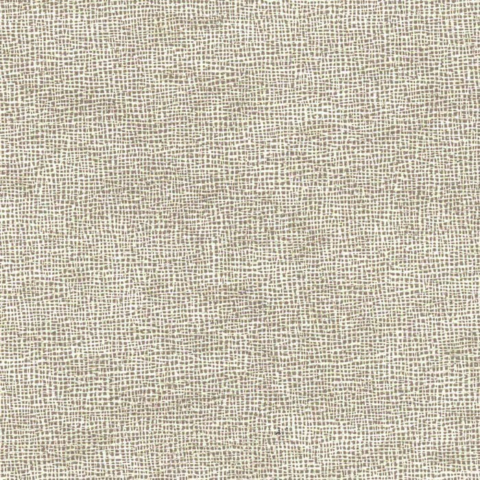 Well-liked Textured wallpaper gray ZN58